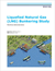 Liquefied Natural Gas Bunkering Study